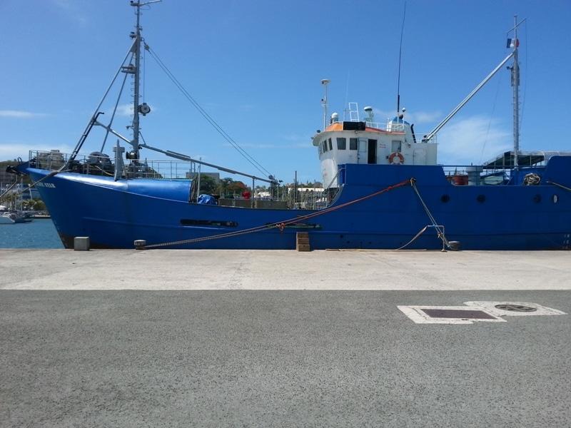 Ship's Photo